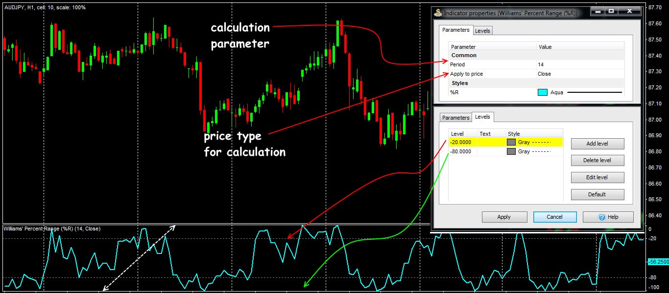 Parameters and general view of WPR indicator
